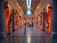 Museu Nacional de Belas Artes - Museum of Fine Arts - Rio de Janeiro