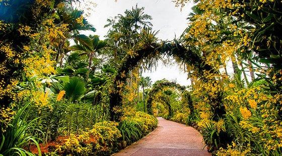 Singapore Botanic Garden - Places in Singapore - World Top Top