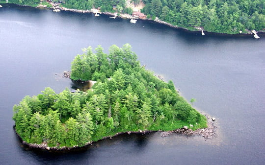 Heart-shaped Blueberry Island