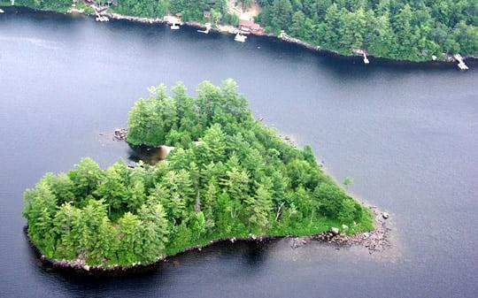 Heart-shaped Blueberry Island