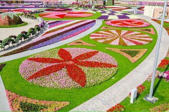 12 Dubai Flower Garden UAE