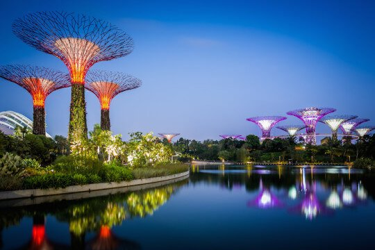 [Image: gardens_by_the_bay_supertrees_7-540x360.jpg]